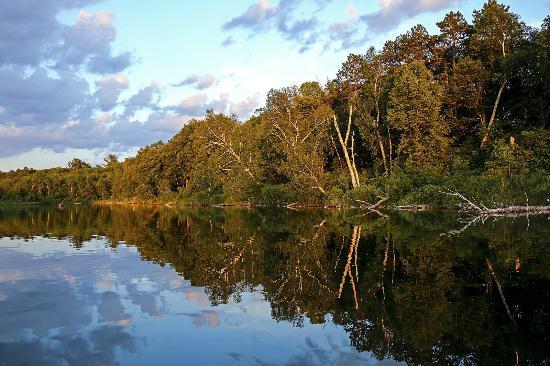 Pine Terrace Resort : Enjpy Calm Waters!