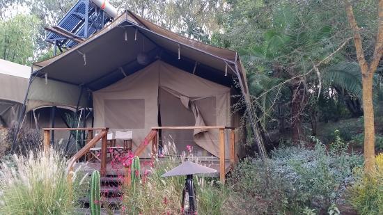 Wildebeest Eco Camp: Deluxe safari tent
