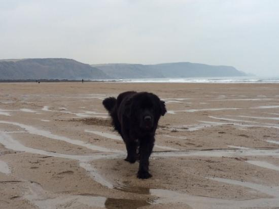 Stibb, UK: Having fun at Sandymouth Beach