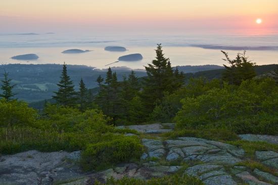 Ellsworth, ME: Cadillac Mountain Sunrise (image stretched on canvas)