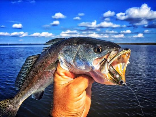 Impulse Fishing Charters, LLC