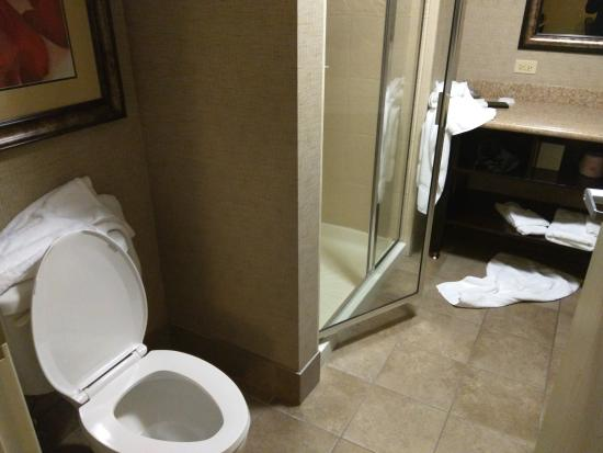 Embassy Suites by Hilton Minneapolis - North: This is the condition of the washroom upon check-in
