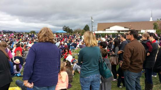 Camarillo Public Library: Chinese New Years crowds
