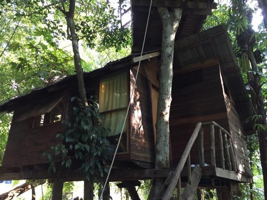 Rabeang Pasak Tree House Resort : photo3.jpg