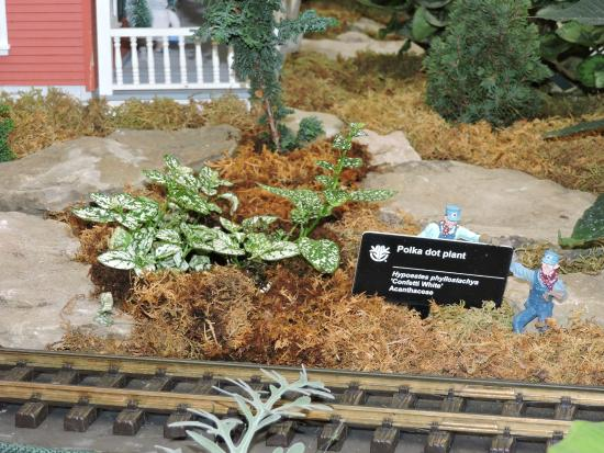 Missouri Botanical Garden: Gardenland Express