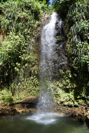 Son of Man Sea Tours: waterfall