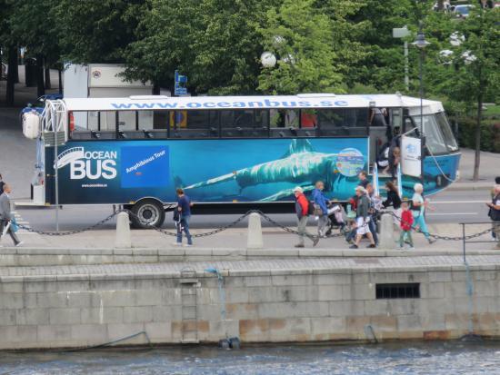 oceanbus