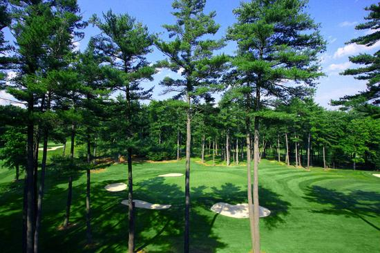 Toftrees Golf Resort: HoleTwo