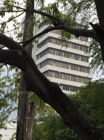 Parque Simon bolivar: Sombra y urbanismo
