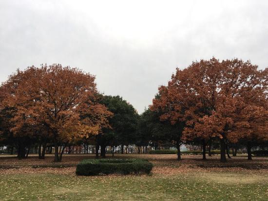 Nakagawa Park