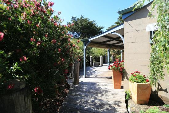 Rhyll Haven Cottage Boardwalk