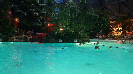Subtropical Swimming Paradise Picture Of Center Parcs Sherwood Forest Rufford Tripadvisor