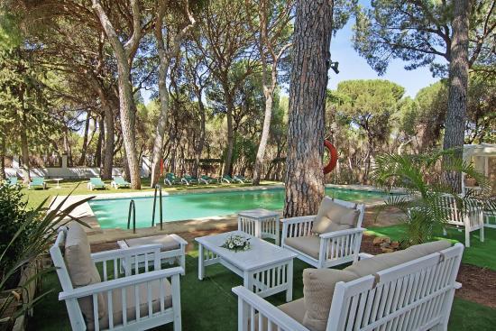 Terraza piscina en temporada de verano picture of tavoletta oromana alcala de guadaira - Piscina cubierta alcala de guadaira ...