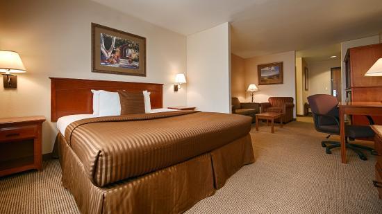 Bloomfield, Nowy Meksyk: Guest Room