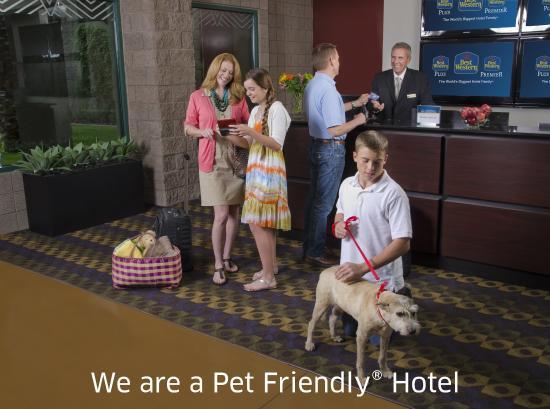 BEST WESTERN Vista Inn: Pet Friendly Hotel