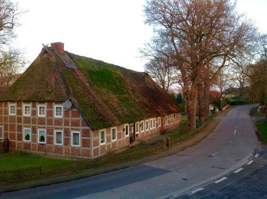 Egestorf, Germania: вид из окна