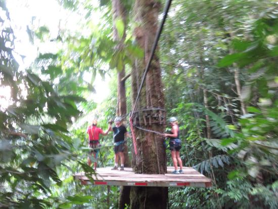 Corcovado Canopy Tour : photo2.jpg
