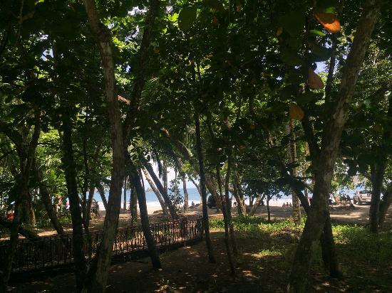 Hotel Verde Mar: Strand/ Zee uitzicht vanaf locatie