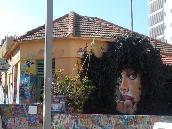 Kerem Hatemanim: Рисунки на стенах дома