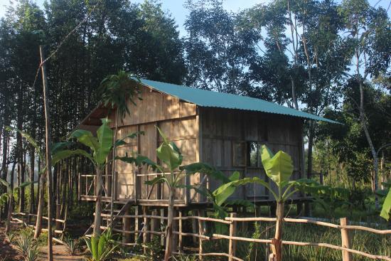 Pepper Farm Phu Quoc