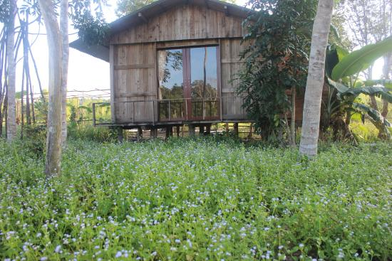Pepper Farm Phu Quoc: bungalow with 2 beds