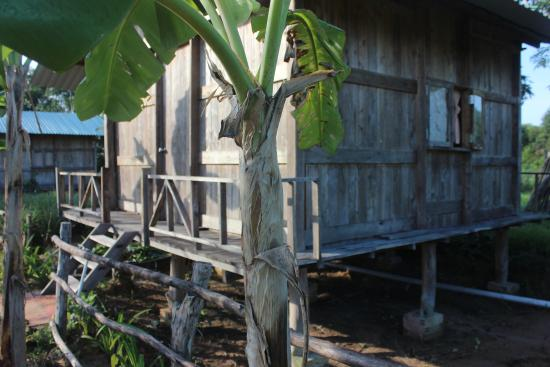 Pepper Farm Phu Quoc: wooden bungalow with 2 beds