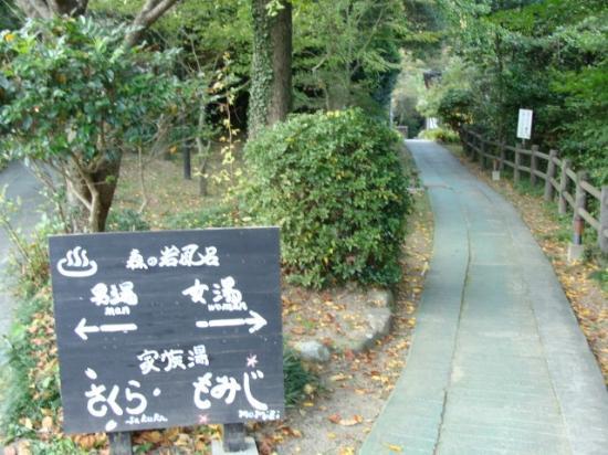 Hotel Sawayaka Heartpia Myoban: 露天風呂への道