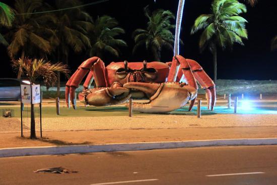 Resultado de imagem para passarela do caranguejo