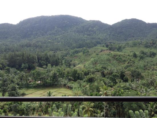 Rock View Motel: Bedroom's balcony view