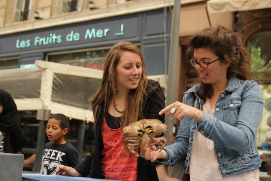 ToctocMarseille - Day Tours