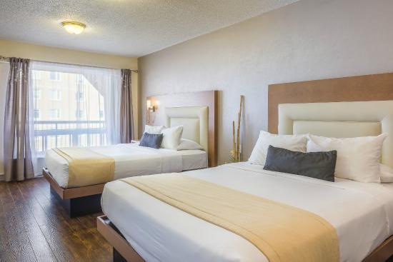 Chambre Economique 2 Lits Doubles Picture Of Hotel Universel