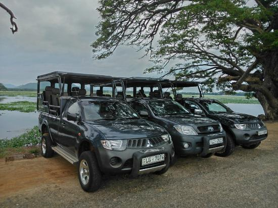 ‪‪Uda Walawe National Park‬, سريلانكا: Our Luxury Jeeps‬