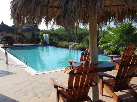 Aruba Cunucu Residence : Enjoy an day by the pool!