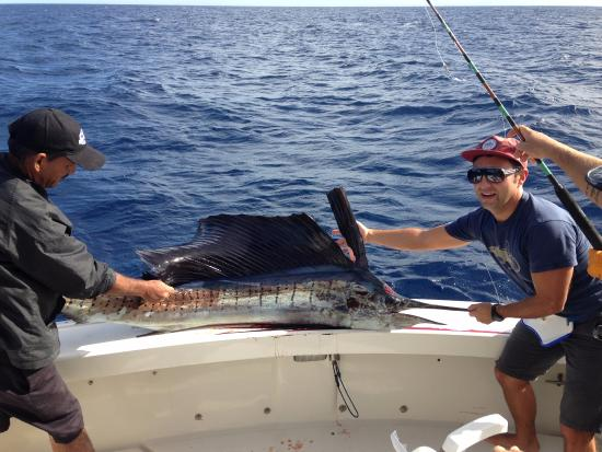 Picture of catch fish cabo san jose del cabo for Los cabos fishing