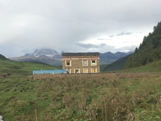 Kangding County, الصين: Coming back from a walk.