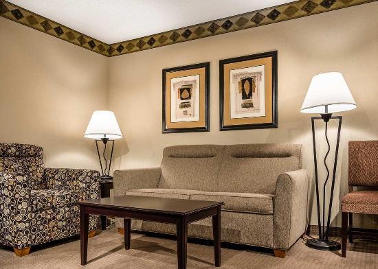 Embassy Suites by Hilton Atlanta Alpharetta: Living Room 2