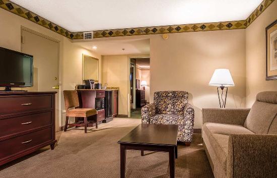 Embassy Suites by Hilton Atlanta Alpharetta: Living Room 3