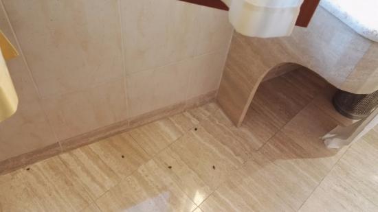 Radisson Blu Resort, Terme di Galzignano – Hotel Sporting: Le cimici del bagno