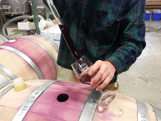 Shelburne Vineyard: Right from the barrel