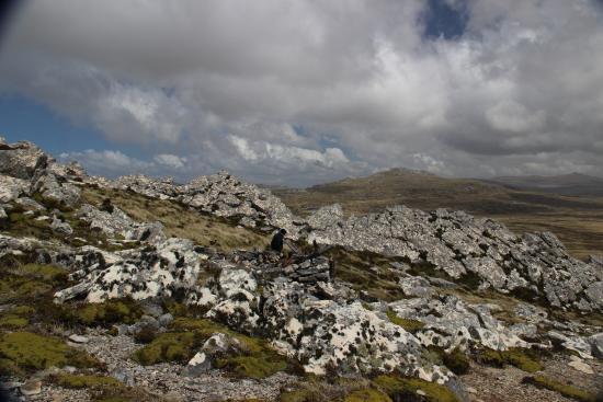 Mount Longdon