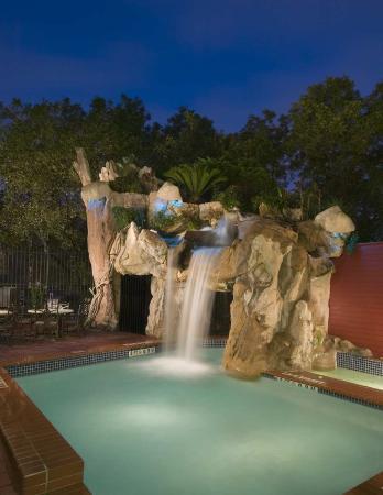 Hilton Garden Inn Austin Downtown/Convention Center: Pool