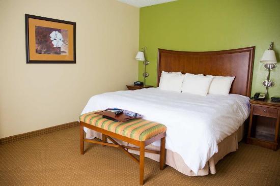 Blairsville, Pensilvania: King Bed