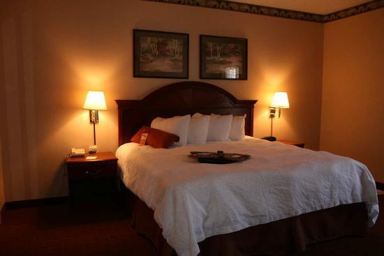Hampton Inn New Albany: King Suite Room
