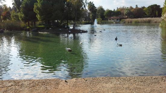 Falez Park