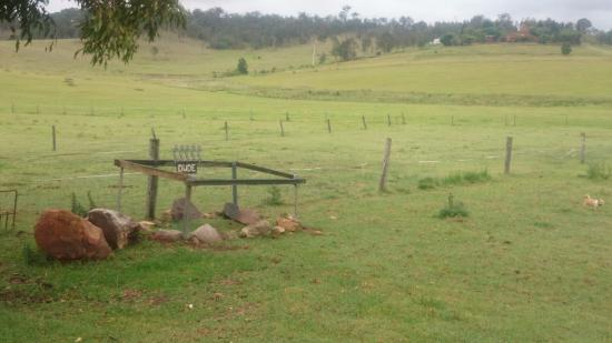 Beaudesert, Australia: Horse died at age 33 and burial in own farm, how I wish I have a farm like this