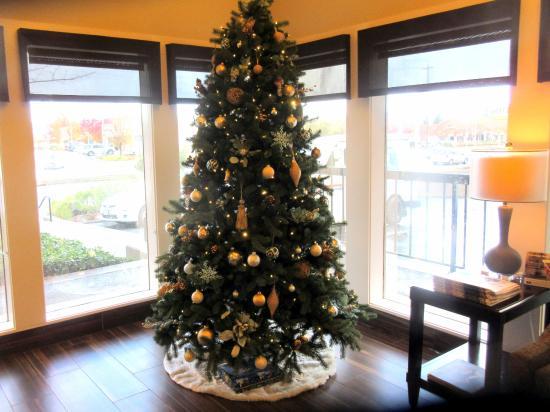 BEST WESTERN PLUS Inn at the Vines: Christmas Tree 2015, Best Western Inn at the Vines, Napa, Ca
