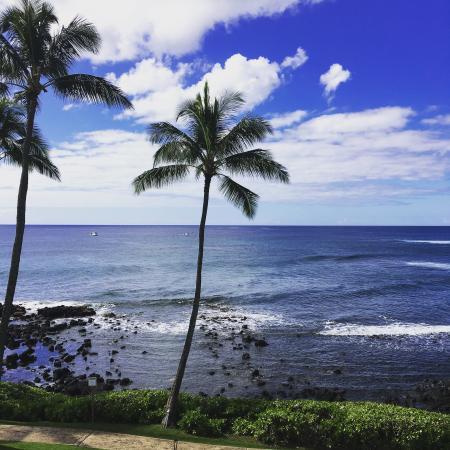 Sheraton Kauai Resort Photo