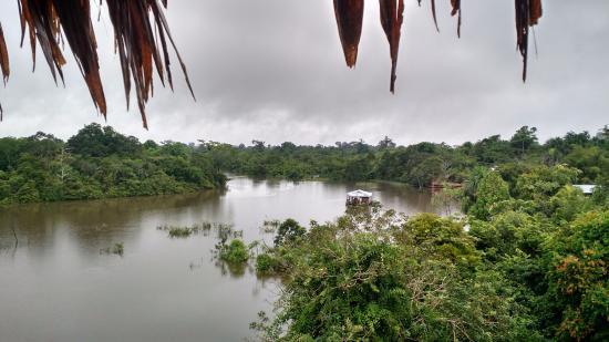 Amazon Rainforest Lodge: Vista del río desde la torre