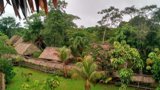 Amazon Rainforest Lodge: Vista de las habitaciones