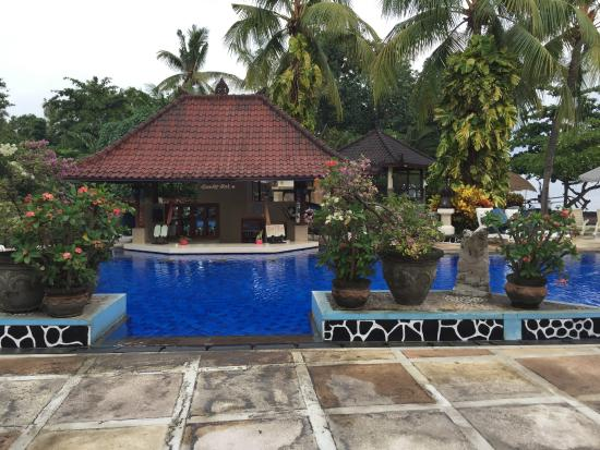 Aneka Lovina Villas & Spa: pool